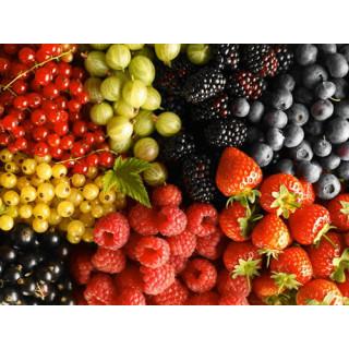 Особливості підживлення плодово-ягідних культур